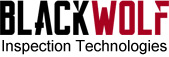 BlackWolf Technologies Inc.